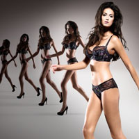 Fall/Winter 2012 Collection of Panache Superbra