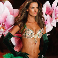 The Victoria's Secret Fashion Show 2012